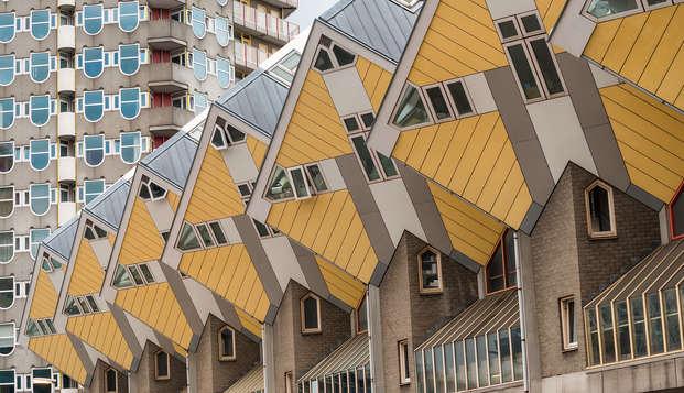 Explorez le magnifique centre-ville de Rotterdam