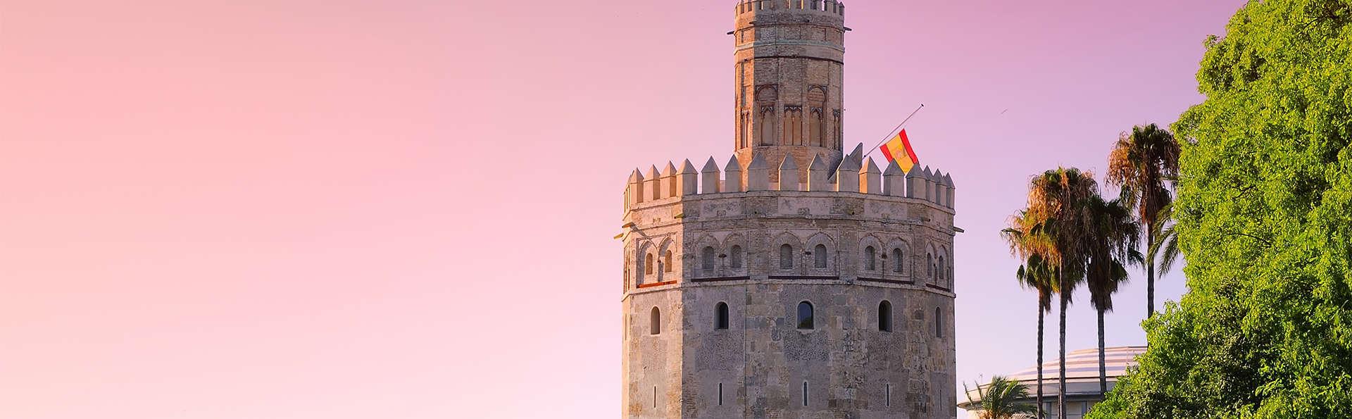 Hotel M.A. Sevilla Congresos - EDIT_sevilla7.jpg