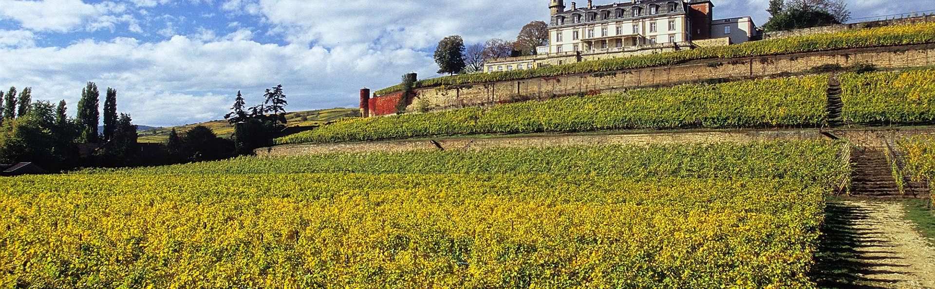 Détente dans un élégant château du XIXème siècle sur la Route des vins d'Alsace