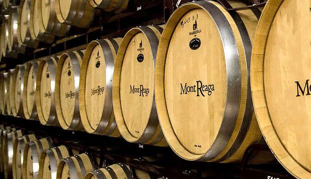 Especial Enoturismo: visita la bodega Mont Reaga con cata de vino en Belmonte