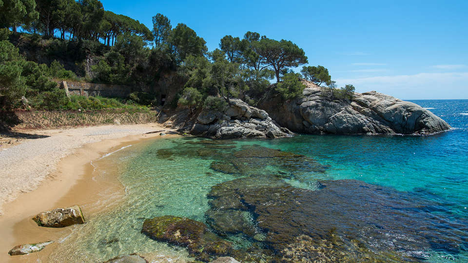 Sallés Hotel&Spa Cala del Pi Beach Retreat (Adults Only) - EDIT_destination.jpg