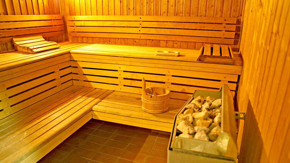 Hôtel Archamps Porte Sud de Genève - edit_sauna1.jpg