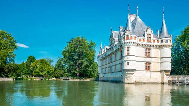 Détendez-vous dans un château luxueux