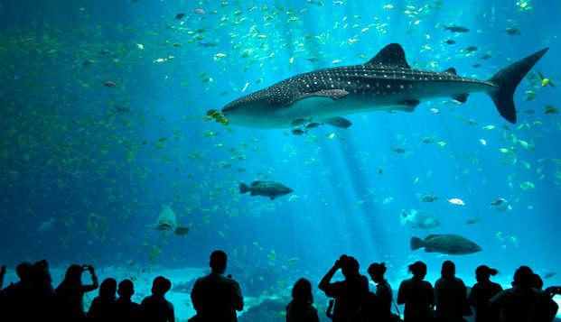Week-end en famille et visite de l'aquarium du Croisic à la Baule