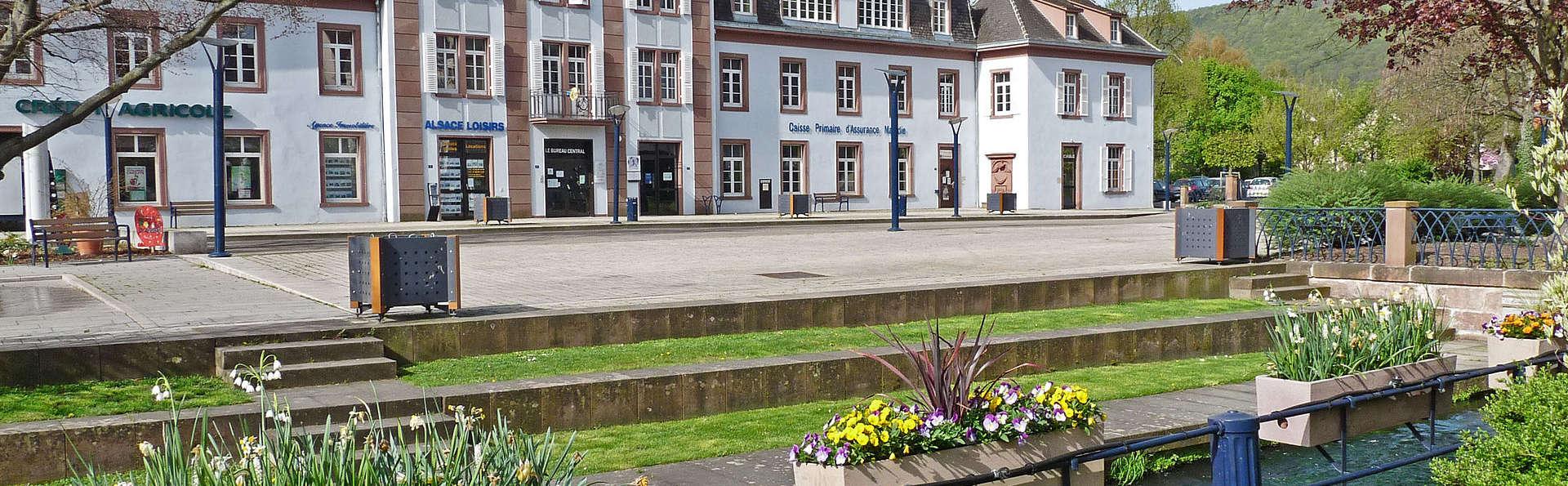 Hôtel du Parc Spa & Wellness - Niederbronn - EDIT_destination.jpg