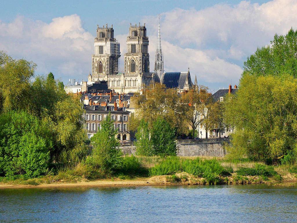 Séjour Centre - Promos d'Hiver : Évasion et calme au coeur d'Orléans  - 4*