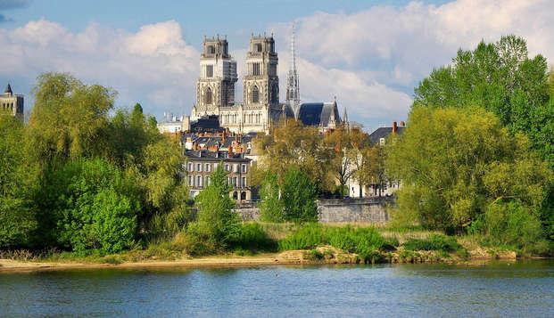 Relax y tranquilidad en el corazón de Orléans