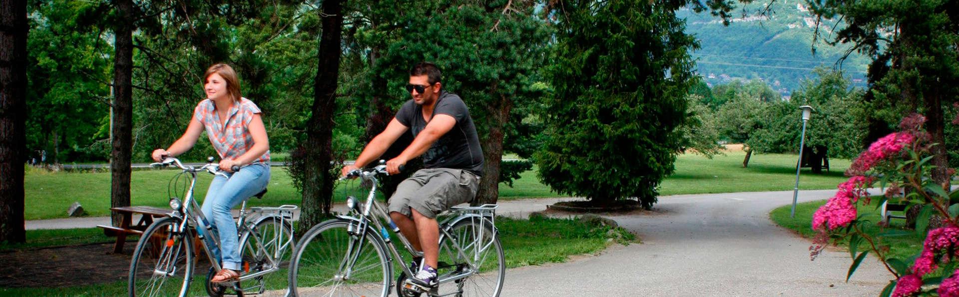 Ternélia - Village Vacances Le Pré du Lac d'Annecy - EDIT_bikes.jpg