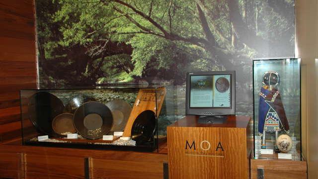 1 entrada para el museo Aula del oro de Belmonte de Miranda