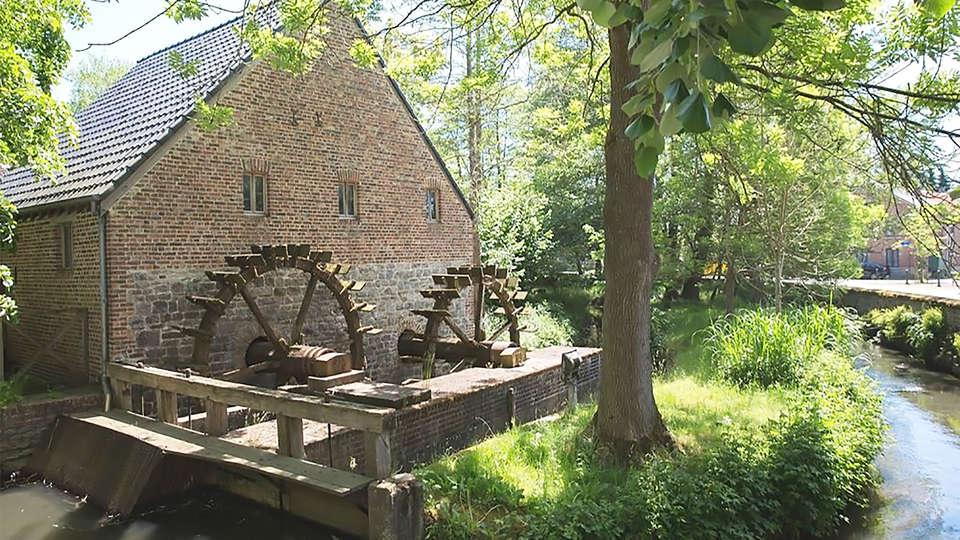 Domaine du Moulin d'Eprave - EDIT_moulin.jpg