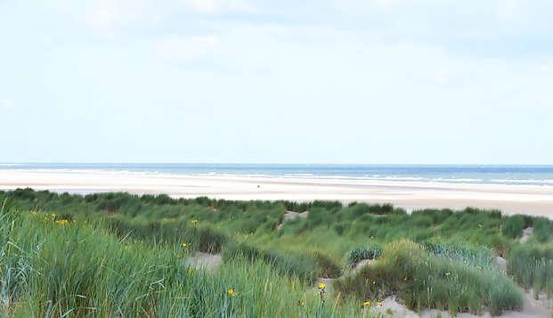 Ontdek de schitterende duinen bij Burgh Haamstede
