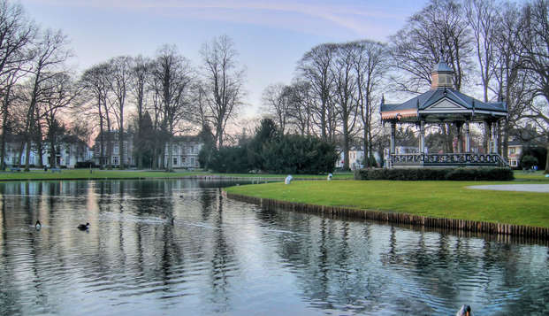Découvrez la nature de région de la Veluwe