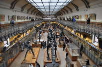Muséum national d'histoire naturelle -
