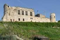Château de Bouteville -