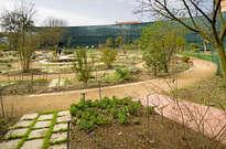 Muséum de Toulouse -