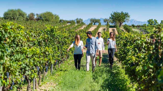 Escapada enológica en Vilanova i la Geltrú con visita a Bodega Familia Torres