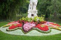 Jardin des plantes du Mans -