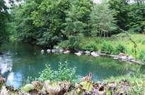 Parc Floral de la Source -