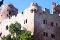 Château de Kintzheim -