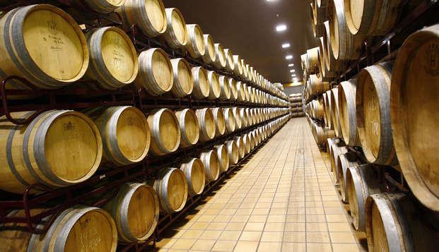 Escapada con visita a las Bodegas Navarro Lopez con cata de vinos en Ciudad Real