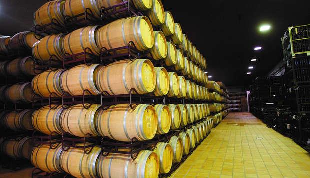 Escapada enológica con visita a bodega y botella de vino en Ciudad Real