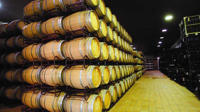 Escapada enológica con visita a bodega, botella de vino y parking gratuito en Ciudad Real