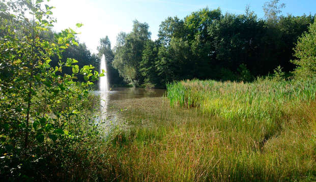 Ontdek de groene, Drentse natuur in Exloo