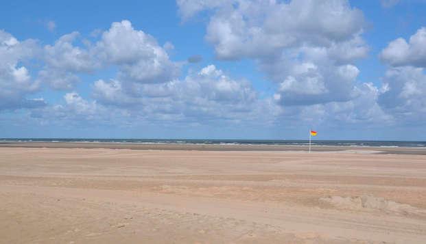 Pasea en bicicleta por la costa holandesa, a dos pasos de La Haya (desde 2 noches)