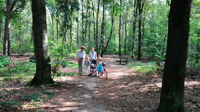 Séjournez dans la nature Veluwe et près de la ville animée d'Arnhem