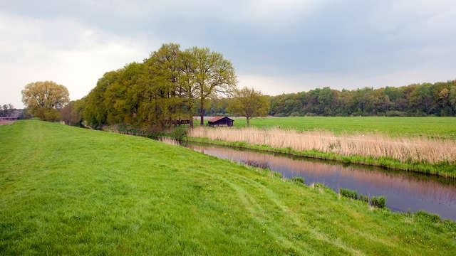 Ontspanning in de natuurlijke omgeving van de Utrechtse heuvelrug