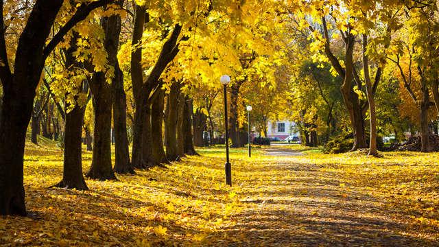 Extra lang genieten en ontspannen in de natuur nabij Utrecht (3=2)