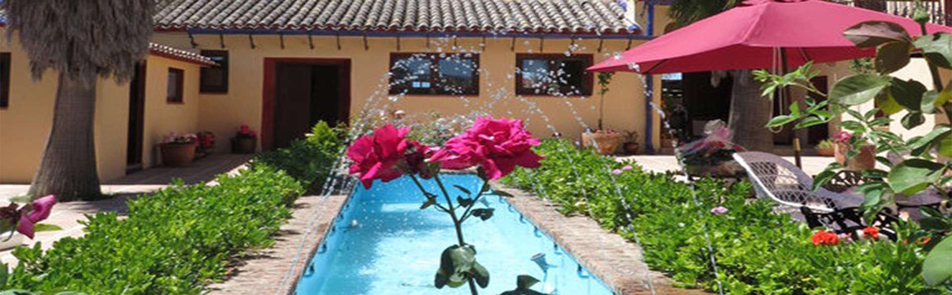 Hacienda Mendoza - FUENTE_PATIO_ENTRADA_HOTEL.jpg