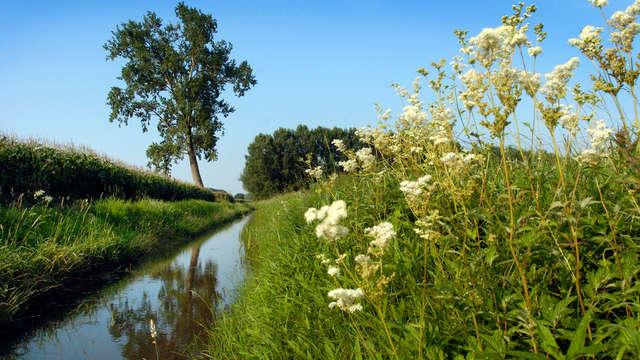 Fietsen en dineren in het Limburgse landschap (vanaf 2 nachten)