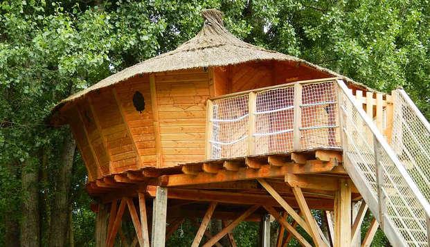 Week-end en cabane forestière à proximité des châteaux de la Loire