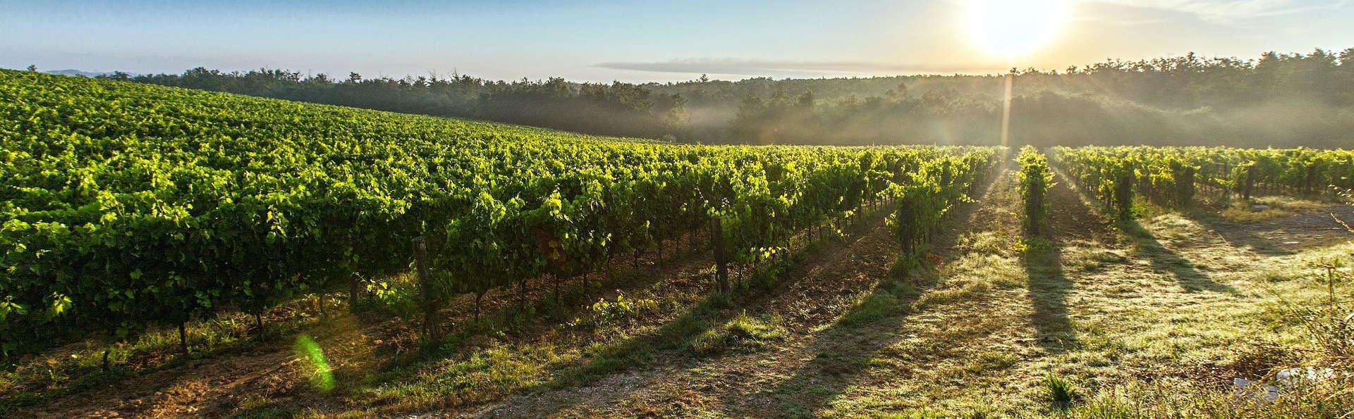 Degustación de vinos en Ronda y relax en Benahavis