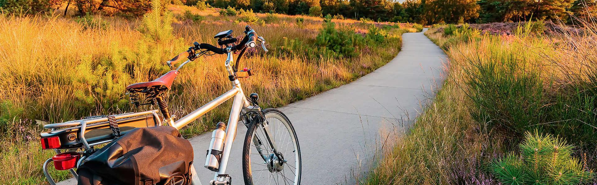 Découverte de la Veluwe à vélo (à partir de 2 nuits)