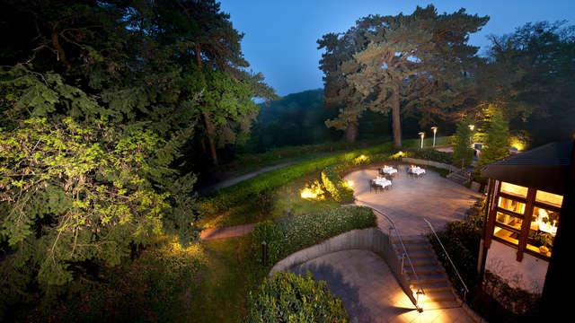 Romanticismo y cava en la naturaleza cerca de Bonn