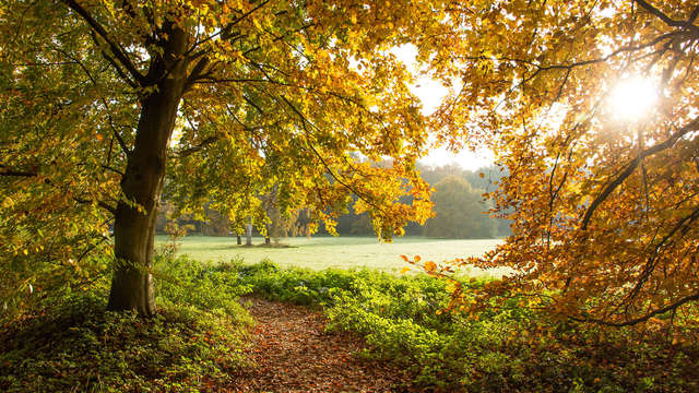 Geniet van gastvrijheid, natuur en comfort in het prachtige Twente (4e nacht gratis!)