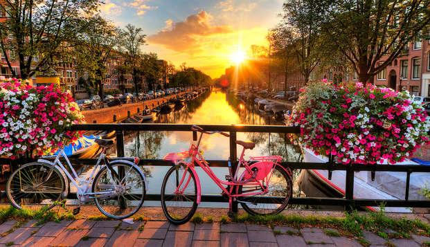 Lujo, comodidad y maravillosas rutas de ciclismo a través de la hermosa ciudad de Amsterdam