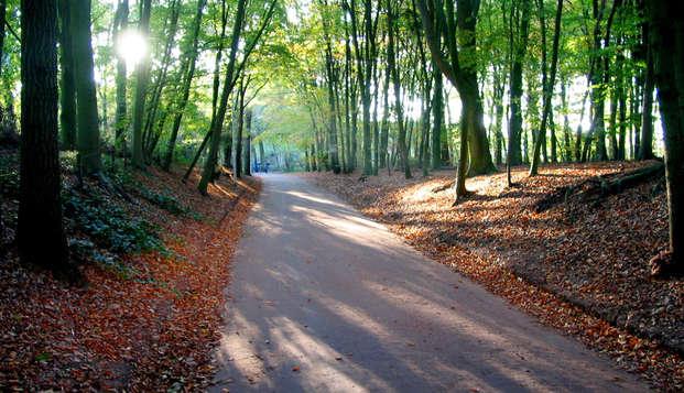 Cyclisme dans la magnifique région de la Veluwe (à partir de 2 nuits)