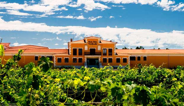 Escapada para amantes del vino: Aranda del Duero con visita y cata a Bodega y estancia en una posada