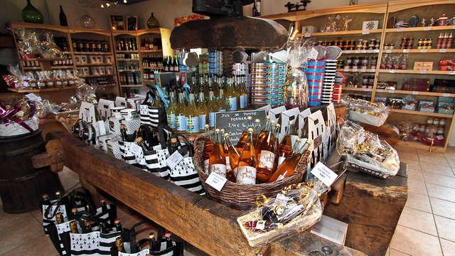 Visite de musée et dégustation de cidre près de Vannes
