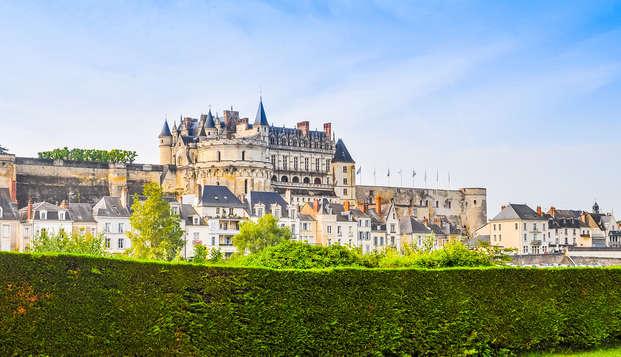 Découvrez des châteaux de la Loire et détendez vous au cœur d'Orléans (à partir de 2 nuits)