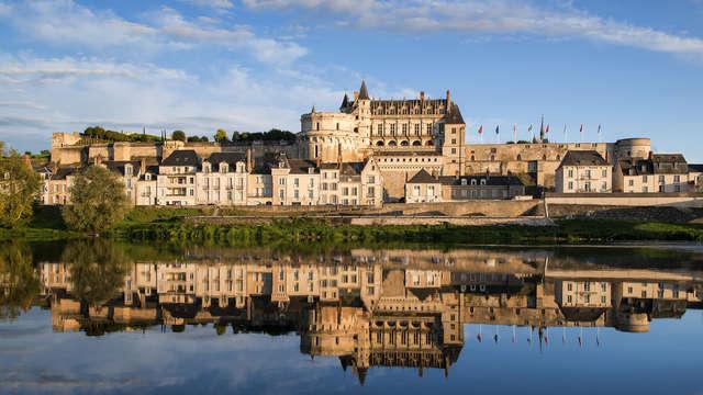 Visitez le château d'Amboise et le zoo de Beauval lors d'un séjour détente (à partir de 2 nuits)