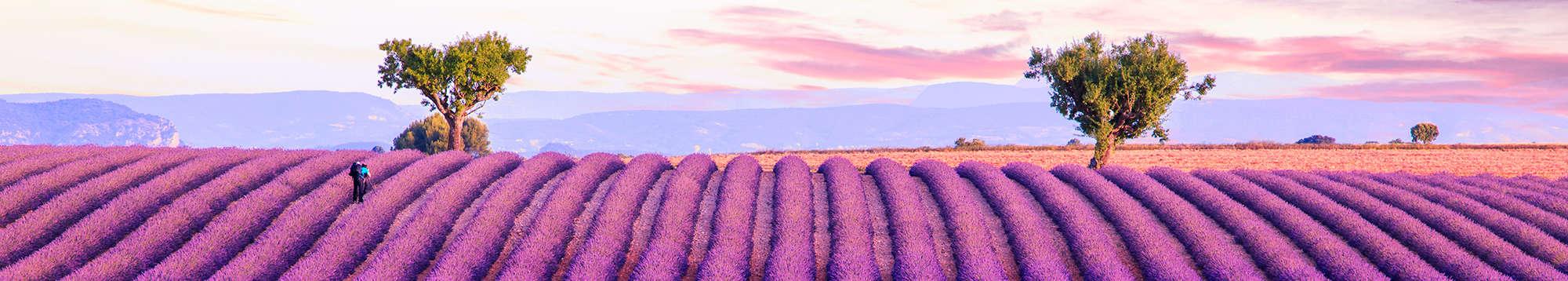 Week-end et séjour en Provence