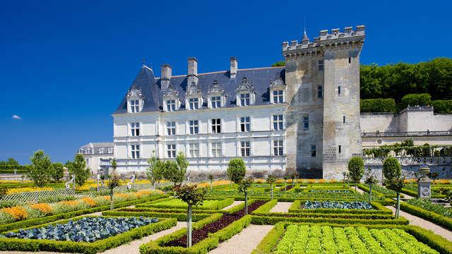 1 Entrada con acceso rápido para el castillo de Villandry y sus jardines para 2 adultos
