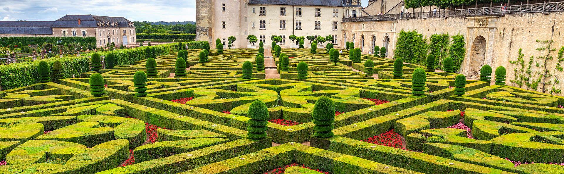 Vie de château et visite des jardins de Villandry