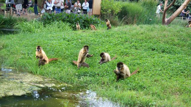 Entrée au Zoo de la Bourbansais pour 2 adultes