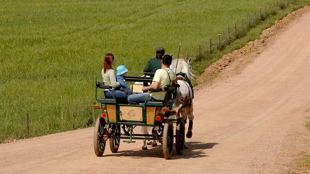 Escapada con paseo en Carro de Caballos por los viñedos de Alentejo