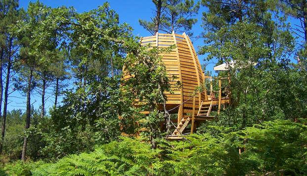 Week-end découverte en cabane perchée au coeur du parc régional de Gascogne